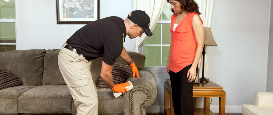 East San Antonio, TX carpet upholstery cleaning